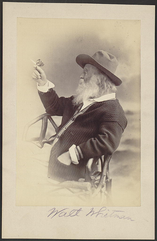 Walt Whitman, half-length portrait, seated, facing left, wearing hat and sweater, holding butterfly. Photograph by Phillips & Taylor, Philadelphia, 1873. Prints and Photographs Division.