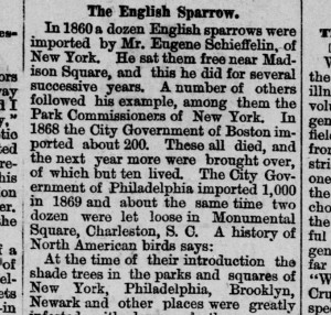 """The English Sparrow."" Daily Globe, September 11, 1882, p. 2."