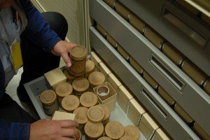 Kirk Sullivan holding a cylinder over an open drawer full of cylinders in boxes