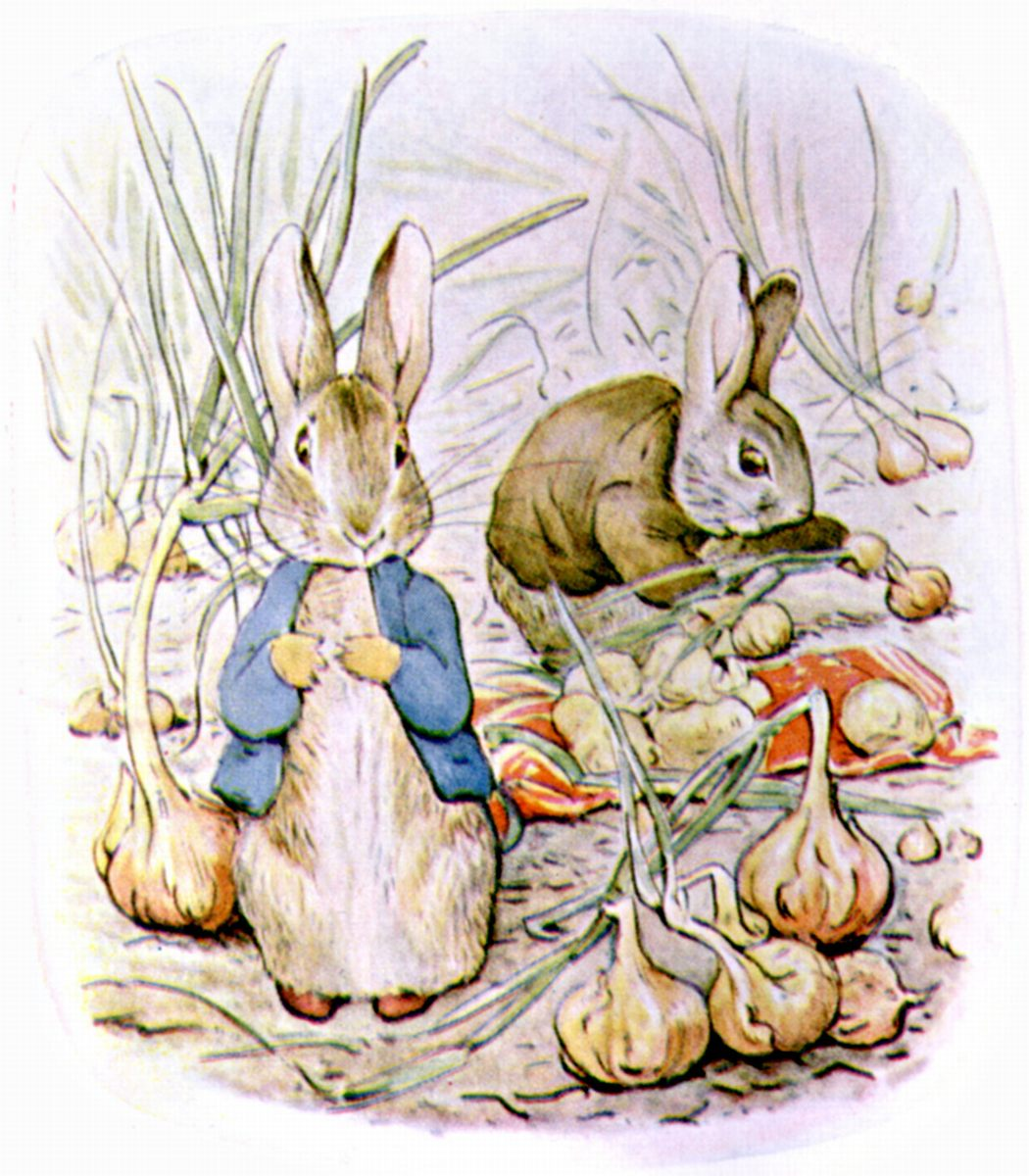here comes peter cottontail some cultural history folklife today