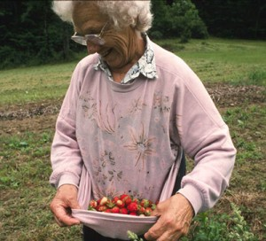 A woman carrying strawberries in the hem of her sweatshirt.