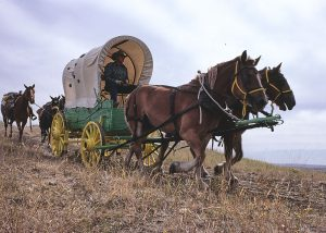 A man drives a covered wagon with spots painted on the canvas cover, pulled by two large horses. Two saddle horses are tide to the back of the wagon.