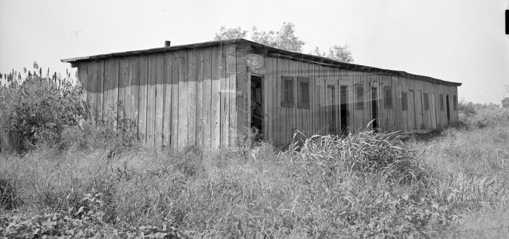 Photo of a flat-roofed shack in high grass.