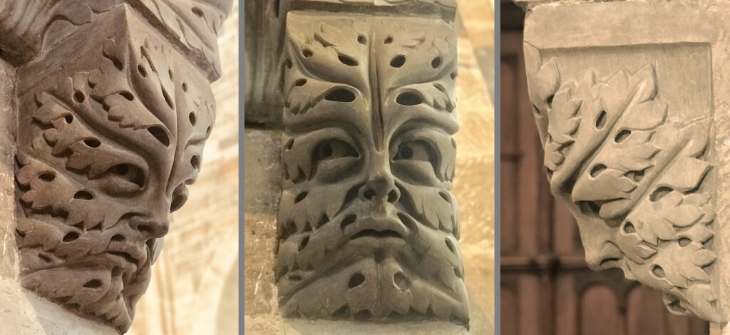 Three views of a foliate head carved into a stone corbel in the cathedral at Bamberg, Germany.