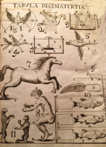 Plate XIII from De Motu Animalium (On Animal Movement) by Giovanni Alfornso Borelli, 1680. Library of Congress, Rare Books and Special Collections.