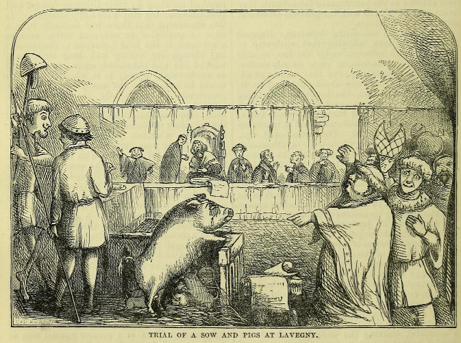 "Trial of a Sow and Pigs at Lavegny, from ""The Book of Days: A Miscellany of Popular Antiquities in Connection with the Calendar, Including Anecdote, Biography, & History, Curiosities of Literature and Oddities of Human Life and Character,"" ed. Robert Chambers, 1867"