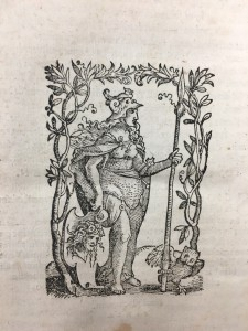 This device appears on the verso of the last printed page of the 1537 edition of Vitarum Recentiorum Iureconsultorum Periochae, printed in Basel by Johannes Oporinus. In it, Athena holds the head of the Gorgon in her right hand. Her owl is at her left.