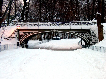 Feb. 12, 2006, snow in Central Park