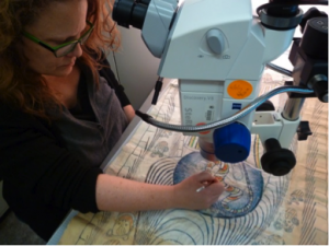 Figure Four: Susan Peckham testing solubility