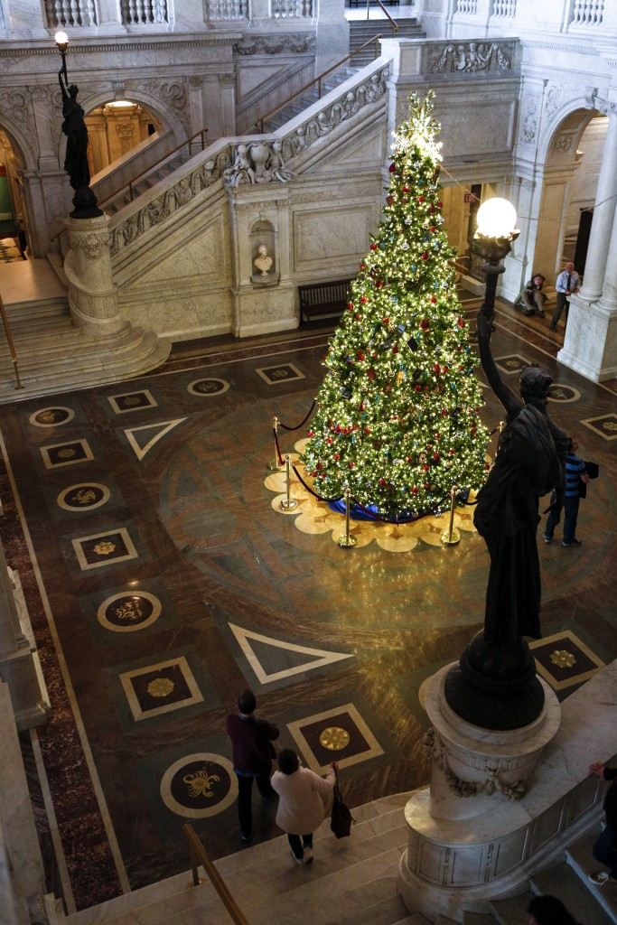 Great Hall Christmas tree. Photo by Shawn Miller.