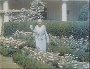 Mrs. Hoover in the White House Rose Garden. Courtesy Herbert Hoover Presidential Library and Museum.