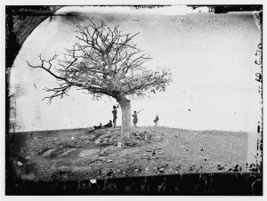 A Lone Grave, Antietam, Maryland. Glass negative by Alexander Gardner, 1862. http://hdl.loc.gov/loc.pnp/cwpb.01110