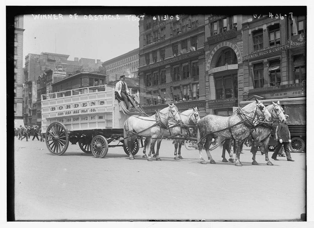 [Work Horse Parade, Borden team], winner of obstacle test, [New York]. Photo by Bain News Service, 1908 June 13. //hdl.loc.gov/loc.pnp/ggbain.01918