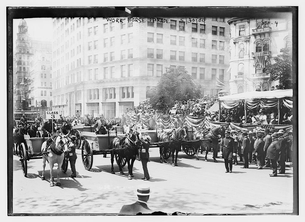 Work Horse Parade, 5/30/09. Photo by Bain News Service, 1909 May 30. //hdl.loc.gov/loc.pnp/ggbain.50199