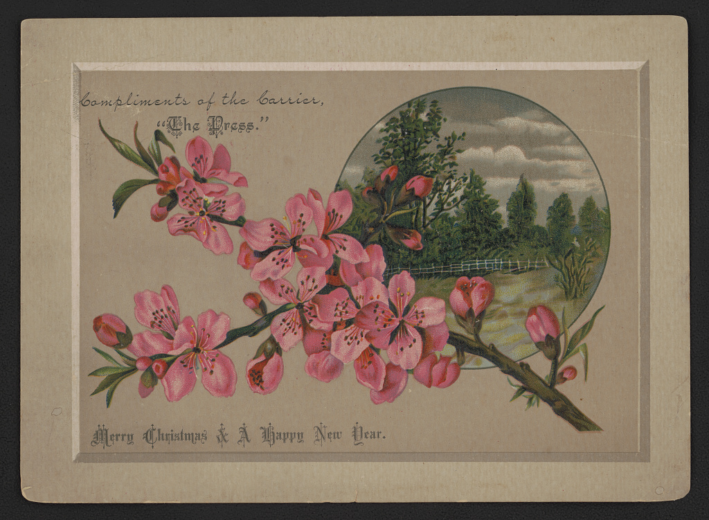 Merry Christmas & a Happy New Year. Chromolithograph, between 1880 and 1890. //hdl.loc.gov/loc.pnp/ppmsca.40207