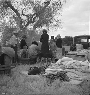 Squatters along highway near Bakersfield, California. Penniless refugees from dust bowl. Twenty-two in family, thirty-nine evictions, now encamped near Bakersfield without shelter, without water and looking for work in the cotton. Photograph by Dorothea Lange, November 1935. //hdl.loc.gov/loc.pnp/fsa.8b26857