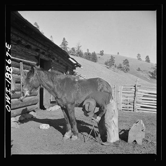 Moreno Valley, Colfax County, New Mexico. William Heck trimming his horse's hoof. Photo by John Collier, 1943 Feb. //hdl.loc.gov/loc.pnp/fsa.8d26072