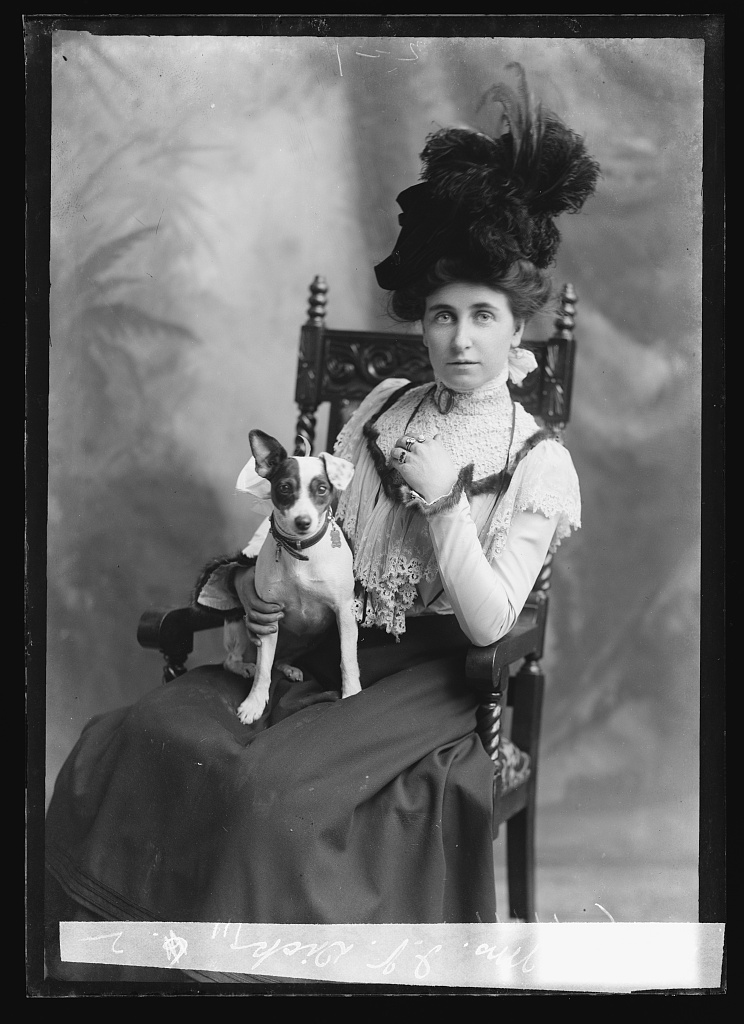 Dick, Mrs. I.V. Photo by C. M. Bell, between February 1894 and February 1901. //hdl.loc.gov/loc.pnp/bellcm.11897