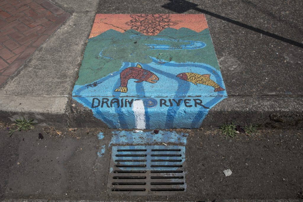 <em>Many American cities and businesses sponsor elaborate artistic and historic murals to depict life in their communities and Vancouver, Washington, has some of these, but also dozens of smaller murals in a most unusual place, atop storm drains on Main Street.</em> Photo by Carol M. Highsmith, 2018. //hdl.loc.gov/loc.pnp/highsm.51132