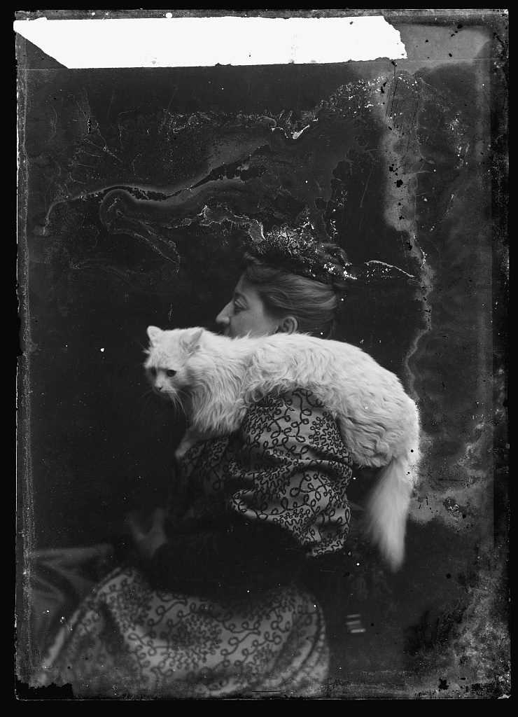 Emmons cat [woman and cat] Photo by C.M. Bell, between February 1894 and February 1901. //hdl.loc.gov/loc.pnp/bellcm.06681