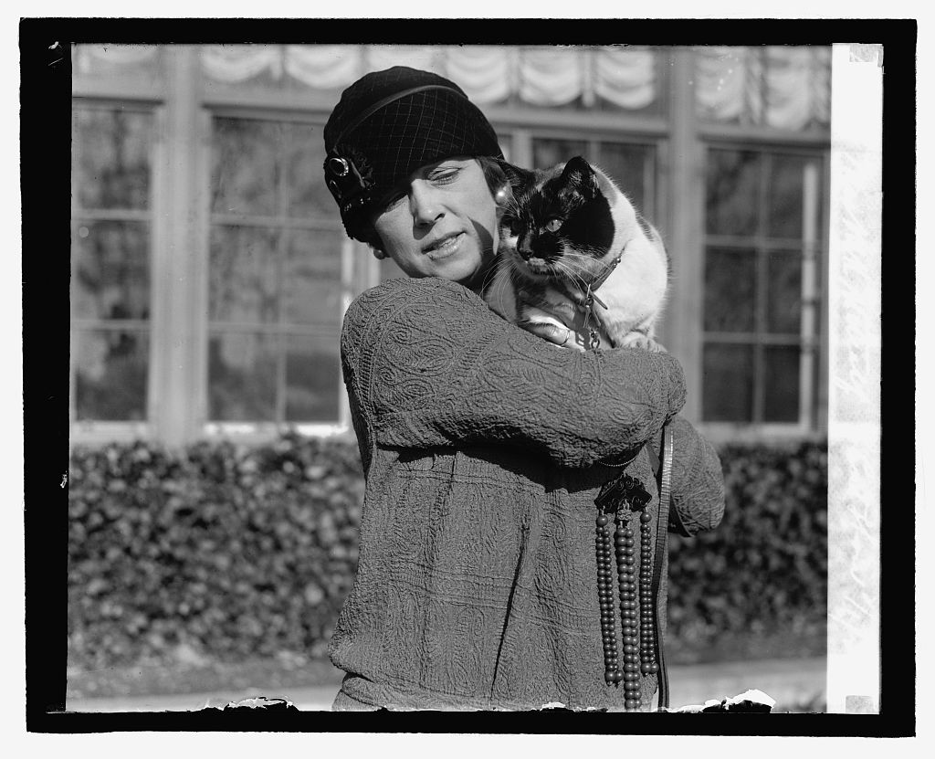 Mrs. M.K. Metcalf, Cat Show, 2/1/27. Photo by National Photo Company, 1927 February 1. //hdl.loc.gov/loc.pnp/npcc.16699