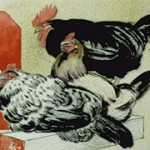 Three roosters sitting on a cracker box
