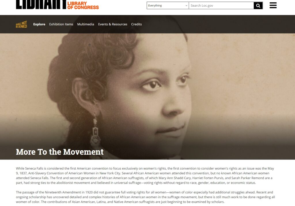 Screen shot of exhibition section: More to the Movement