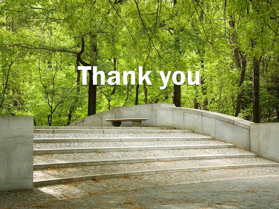 "Photo of Trees and a Bridge with the text ""Thank you"""